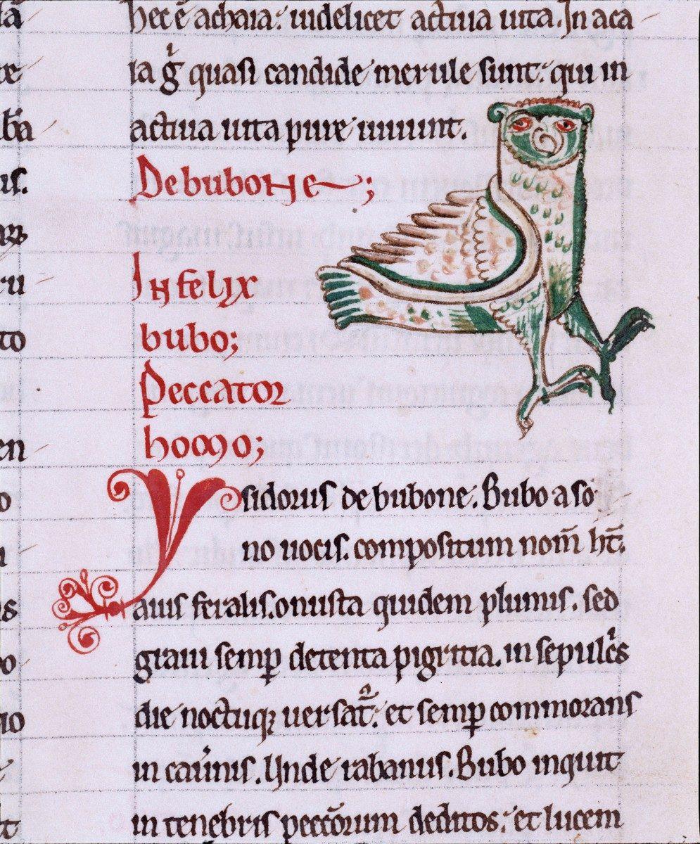 De Avibus. Hugues de Fouilloy. Clairvaux, 1170. Cote Ms 177. Médiathèque du Grand Troyes. Photo: P.Jacquinot